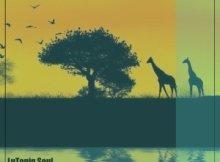 Download EP: LuToniq Soul - Amaphupho
