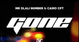 Mr Dlali Number & Cairo CPT - Gone