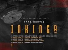Afro Exotiq & Drumetic Boyz - Inkinga (Original Mix)