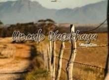 Muziqal Tone ft Nobantu Vilakazi - Ihlaya Nguwe
