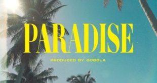 DJ Kaygo ft DreamTeam, 2Lee Stark & Quickfass Cass - Paradise