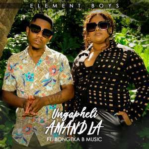 Element Boys ft Bongeka B Music - Ungapheli Amandla