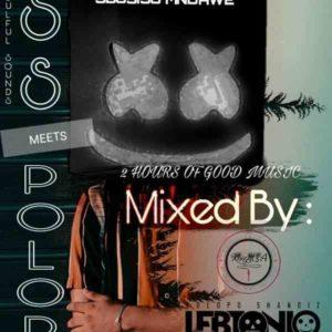 LebtoniQ - POLOPO 14 Mix (DSS Meets POLOPO Edition)
