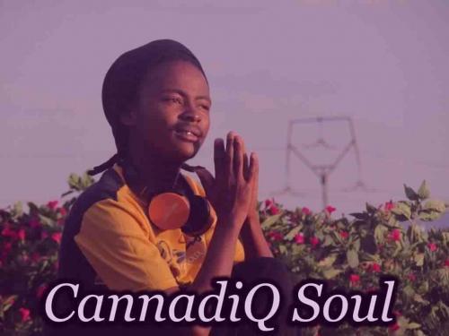 CannadiQ Soul - Letter To Kelvin Momo (Twenty Threeted Mix)