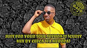 Ceega Wa Meropa - Just For Your Soul Session 22 (Guest Mix)