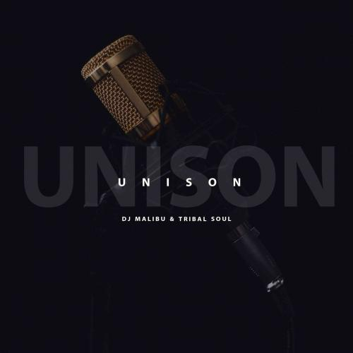 DJ Malibu & Tribal Soul - Unison