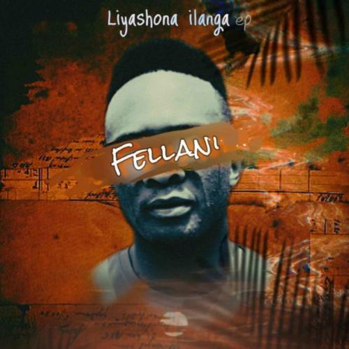 Fellani ft PuleNP Rsa - Liyashona ilanga
