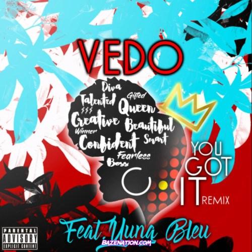 Vedo ft Yung Bleu - You Got It (Remix)