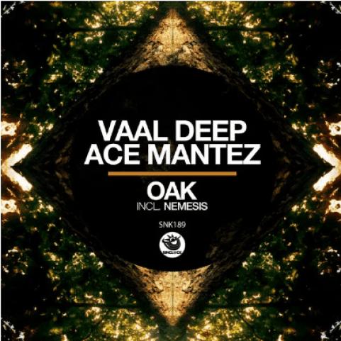 Ace Mantez - Nemesis (Dub Mix 2020)