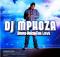 ALBUM: DJ Mphoza - Bring Back the Love
