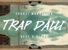 (Video) ShabZi Madallion - Trap Dalli