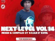 Rojah D'kota - Next Level Vol 14 Mix