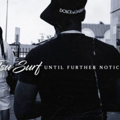 Tsu Surf ft Luccie Fontaine - Should've Known Better