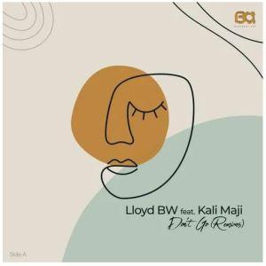 Lloyd BW ft Kali Mija - Don't Go (Ed-Ward Remix)