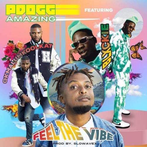 PDogg Amazing ft Okmalumkoolkat & Blxckie - Feeling The Vibe