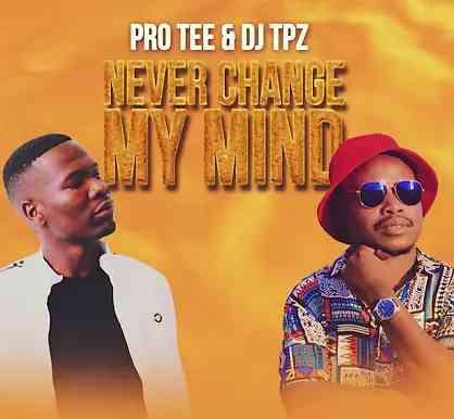 Pro-Tee & DJ TPZ - Never Change