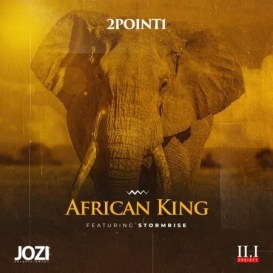 2point1 ft StormRise - African King