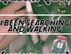 Photo of Deejay Vdot – I'vebeen Searching & walking