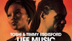 Toshi & Timmy Regisford - Singawonga (Remix)