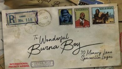 Photo of Burna Boy – Be Wonderful