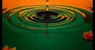 RZA - Be Like Water