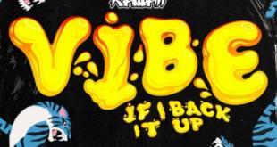 Cookiee Kawaii ft Tyga - Vibe (If I Back It Up) (Remix)