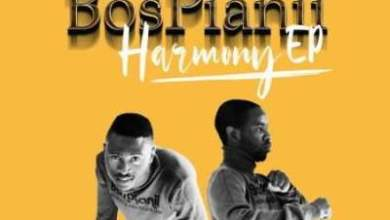 Photo of EP: BosPianii – Harmony (Zip File)
