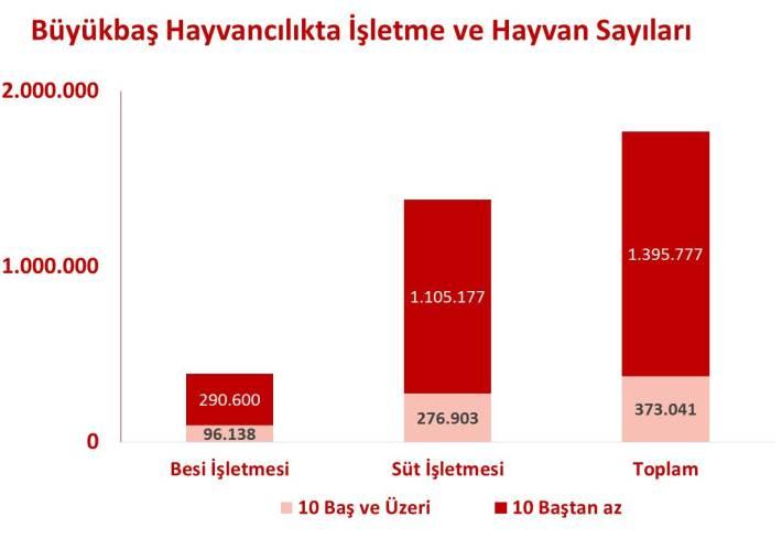 buyukbas_hayvancilik_sayilari