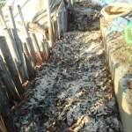 落葉堆肥づくり:5回目の仕込み