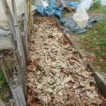 落葉堆肥づくり:7回目の仕込み