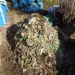 グリーン堆肥づくり:No.10堆肥の仕込み(2)