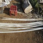 農業資材:割竹支柱づくり(1回目)