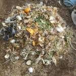 グリーン堆肥づくり:No.2堆肥の仕込み(1)