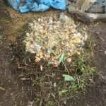 グリーン堆肥づくり:No.11G堆肥の仕込み(1)