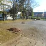 落葉堆肥づくり:落葉かき(2回目)