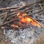 肥料づくり:草木灰づくり(6)