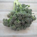 秋播きブロッコリー:収穫を始める