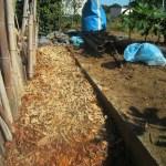 落葉堆肥づくり:6回目の仕込み