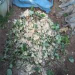 グリーン堆肥づくり:No.10G堆肥の仕込み(2)