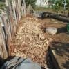 落葉堆肥づくり:11回目の仕込み