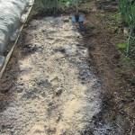 長ネギ:苗床の土づくり