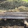 農業施設:真竹支柱の整理整頓