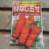 春播きニンジン:播種(1)