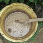 肥料づくり:液体肥料(6)