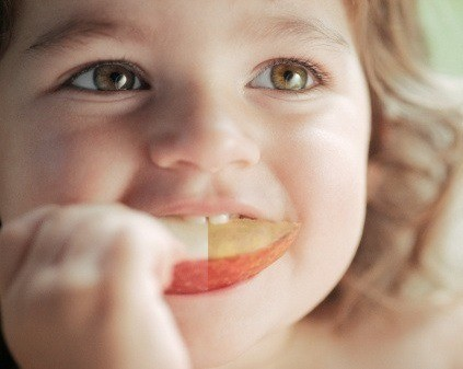 GM Apples or browning apples, its your choice