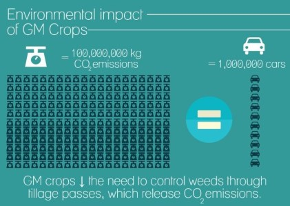 GM Crops Provide $150 Billion in Global Benefits