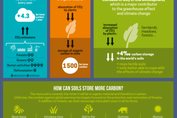 Carbon sequestration in soils - 4 per 1000