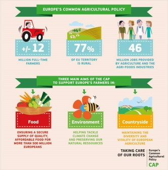 What is the Common Agricultural Policy? 1