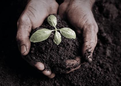 Biosolids: The Underutilized Resource