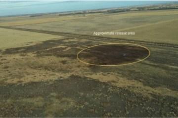 Amherst incident - pipeline